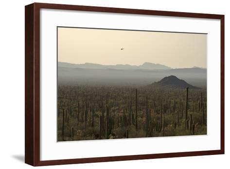 A Border Patrol Helicopter Looking for Illegal Activity in Organ Pipe Cactus National Monument-Bill Hatcher-Framed Art Print
