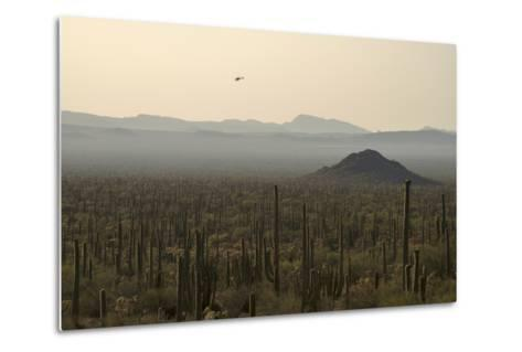 A Border Patrol Helicopter Looking for Illegal Activity in Organ Pipe Cactus National Monument-Bill Hatcher-Metal Print