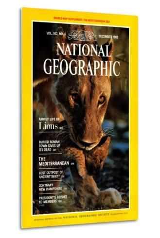 Cover of the December, 1982 National Geographic Magazine-Des & Jen Bartlett-Metal Print