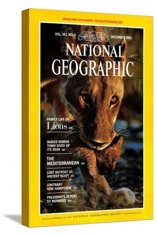 Cover of the December, 1982 National Geographic Magazine-Des & Jen Bartlett-Stretched Canvas Print