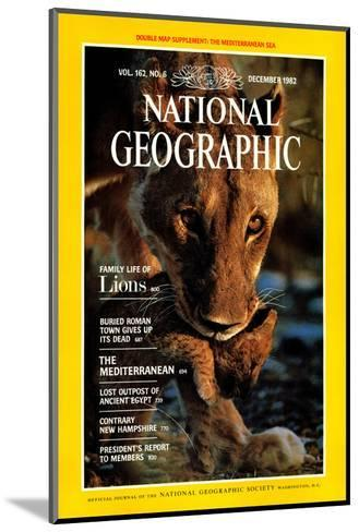 Cover of the December, 1982 National Geographic Magazine-Des & Jen Bartlett-Mounted Photographic Print