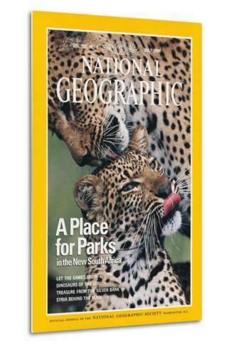 Cover of the July, 1976 National Geographic Magazine-Chris Johns-Metal Print