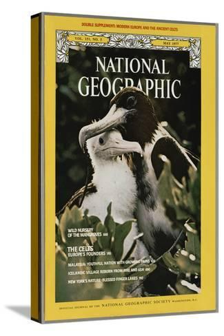 Cover of the May, 1977 National Geographic Magazine-Bianca Lavies-Stretched Canvas Print