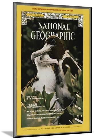 Cover of the May, 1977 National Geographic Magazine-Bianca Lavies-Mounted Photographic Print