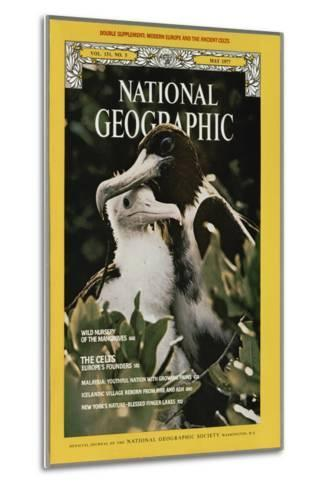Cover of the May, 1977 National Geographic Magazine-Bianca Lavies-Metal Print