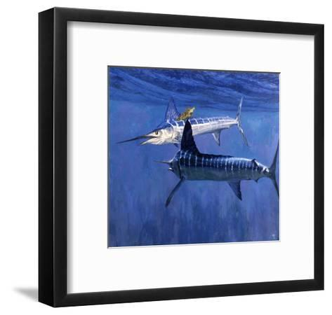 Two Striped Marlin and Turtle-Stanley Meltzoff-Framed Art Print
