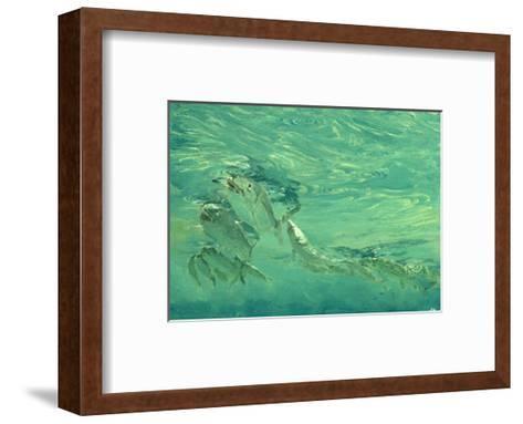 Bonefish Bibblin' in De Drougey Water, 1988-Stanley Meltzoff-Framed Art Print