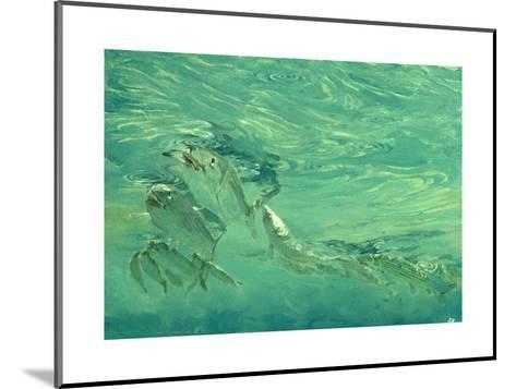 Bonefish Bibblin' in De Drougey Water, 1988-Stanley Meltzoff-Mounted Giclee Print