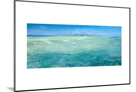 Bones Up with the Tide: a Panoramic Island View of Bonefish Searching for Food in Shallow Water-Stanley Meltzoff-Mounted Giclee Print