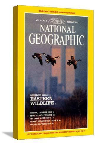 Cover of the February, 1992 National Geographic Magazine-Raymond Gehman-Stretched Canvas Print
