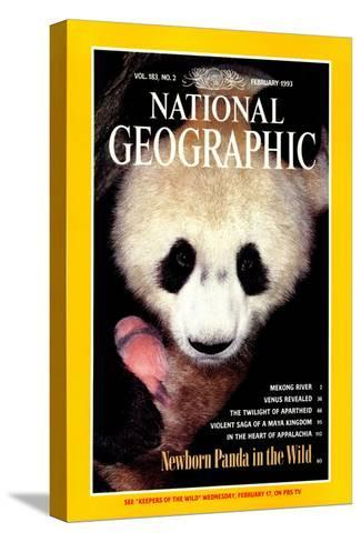 Cover of the February, 1993 National Geographic Magazine-Lu Zhi-Stretched Canvas Print