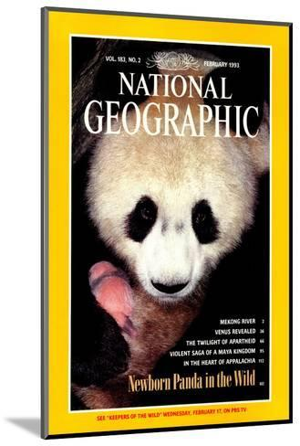 Cover of the February, 1993 National Geographic Magazine-Lu Zhi-Mounted Photographic Print