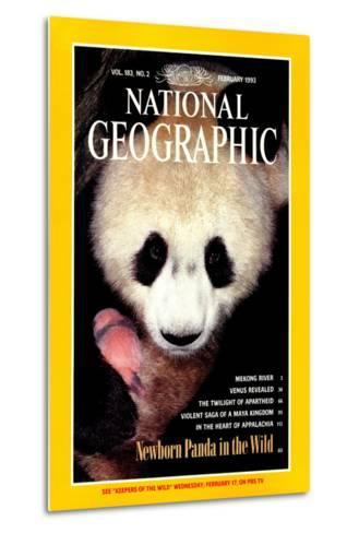 Cover of the February, 1993 National Geographic Magazine-Lu Zhi-Metal Print