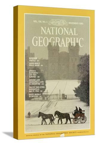 Cover of the November, 1980 National Geographic Magazine-James L^ Stanfield-Stretched Canvas Print