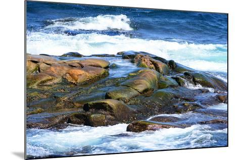 Surf and Exposed Rock at High Tide Near Neil's Harbor-Darlyne A^ Murawski-Mounted Photographic Print