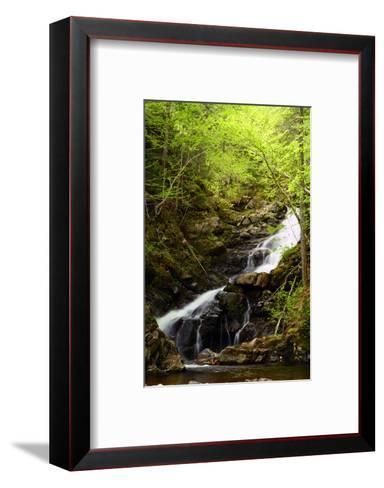 Macintosh Brook Waterfalls in Cape Breton Highlands National Park-Darlyne A^ Murawski-Framed Art Print