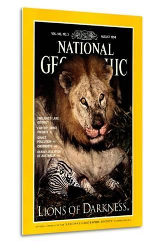 Cover of the August, 1994 National Geographic Magazine-Beverly Joubert-Metal Print