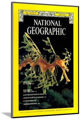 Cover of the June, 1978 National Geographic Magazine-Paul Zahl-Mounted Photographic Print