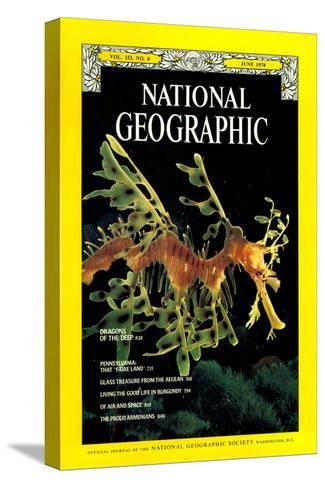 Cover of the June, 1978 National Geographic Magazine-Paul Zahl-Stretched Canvas Print