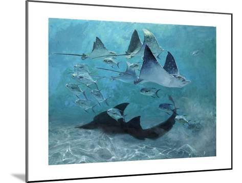 Four Eagle Rays, Shark and Permit School, 2000-Stanley Meltzoff-Mounted Giclee Print