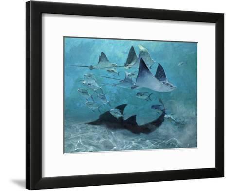 Four Eagle Rays, Shark and Permit School, 2000-Stanley Meltzoff-Framed Art Print