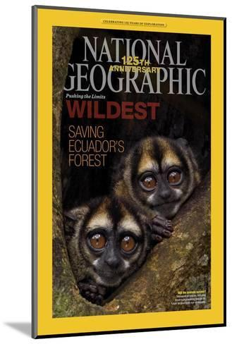 Cover of the January, 2013 National Geographic Magazine-Tim Laman-Mounted Photographic Print
