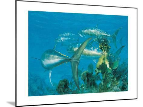 Bluefin Tuna, 'Right Turn at Cay Sal,' 1975-Stanley Meltzoff-Mounted Giclee Print