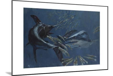 Broadbill, Mako and Sea Arrows, New Jersey, 1988-Stanley Meltzoff-Mounted Giclee Print