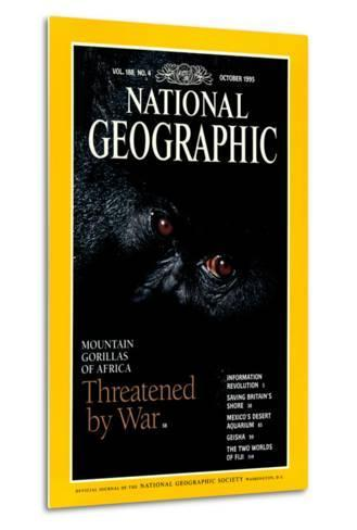 Cover of the October, 1995 National Geographic Magazine-Michael Nichols-Metal Print