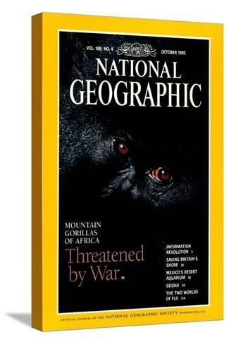 Cover of the October, 1995 National Geographic Magazine-Michael Nichols-Stretched Canvas Print