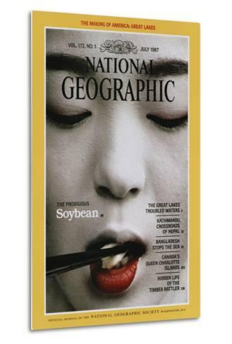 Cover of the July, 1987 National Geographic Magazine-Chris Johns-Metal Print