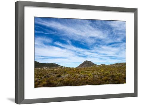 A Fragile Fynbos and Restios Plain Beneath a Front of Wispy Clouds-Jason Edwards-Framed Art Print