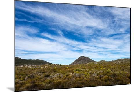 A Fragile Fynbos and Restios Plain Beneath a Front of Wispy Clouds-Jason Edwards-Mounted Photographic Print