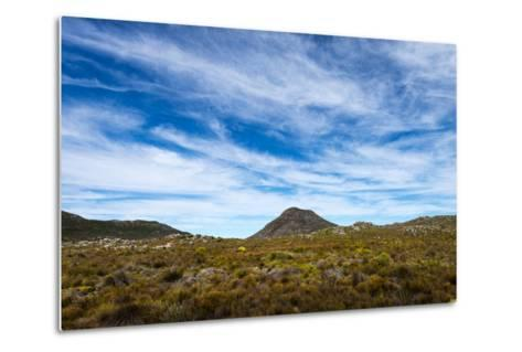 A Fragile Fynbos and Restios Plain Beneath a Front of Wispy Clouds-Jason Edwards-Metal Print