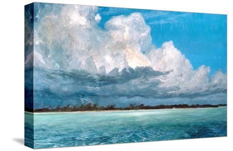 Tarpon Strike at Bob Rock-Stanley Meltzoff-Stretched Canvas Print