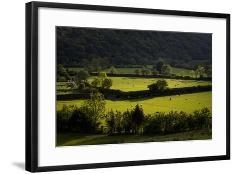 Fields Near Buttermere in the Lake District-Alex Treadway-Framed Art Print