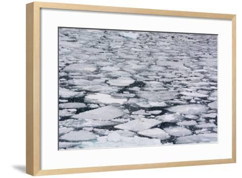 Pack Ice in Disko Bay During a Snow Storm-Sergio Pitamitz-Framed Art Print