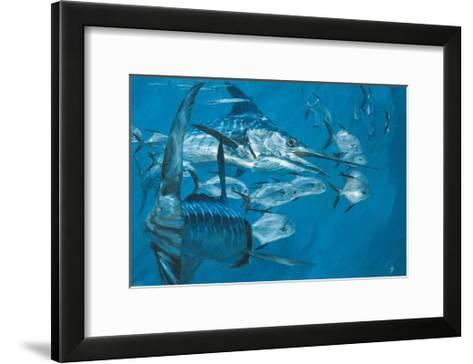 Two Striped Marlin and Pompano, Cabo San Lucas: Striped Marlin Work as a Team to Round Up Pompano-Stanley Meltzoff-Framed Art Print