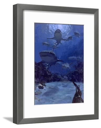 Homing into the Rookery, Dry Bar, 1975: Near the Famous Sleeping Shark Rookery in Dry Bar-Stanley Meltzoff-Framed Art Print