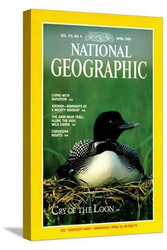 Cover of the April, 1989 National Geographic Magazine-Michael S^ Quinton-Stretched Canvas Print