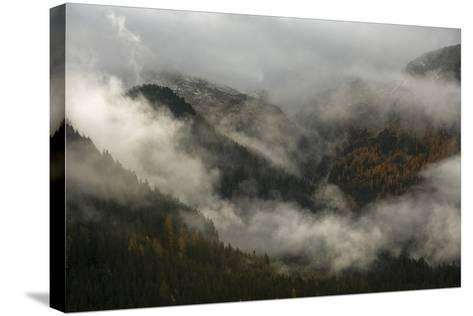 Clouds Drift over Forests in Lagorai-Ulla Lohmann-Stretched Canvas Print