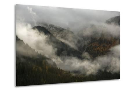 Clouds Drift over Forests in Lagorai-Ulla Lohmann-Metal Print
