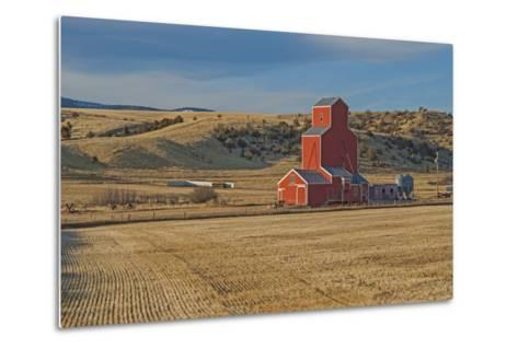 A Grain Elevator and Silos Stand Amid Fallow Wheat Fields in the Gallatin Valley, North of Bozeman-Gordon Wiltsie-Metal Print