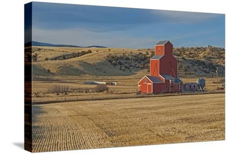 A Grain Elevator and Silos Stand Amid Fallow Wheat Fields in the Gallatin Valley, North of Bozeman-Gordon Wiltsie-Stretched Canvas Print