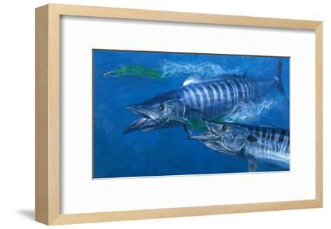 Two Wahoo, 1986: Two of the Fastest Fish in the Sea Close in on Colorful Trolling Lures-Stanley Meltzoff-Framed Art Print