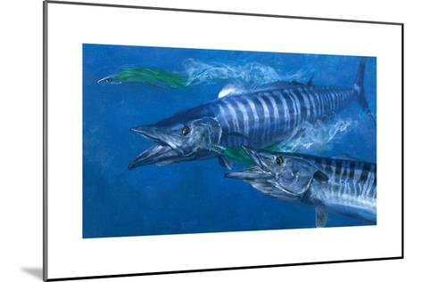 Two Wahoo, 1986: Two of the Fastest Fish in the Sea Close in on Colorful Trolling Lures-Stanley Meltzoff-Mounted Giclee Print