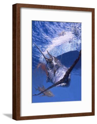Gaffed: Makaira Nigricans, a Defeated Blue Marlin Is Brought Alongside a Sport Fishing Boat-Stanley Meltzoff-Framed Art Print