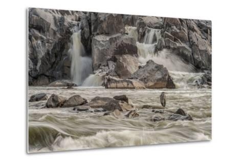 A Great Blue Heron, Ardea Herodias, on a Rock in the Swift Moving Waters of Great Falls-Irene Owsley-Metal Print