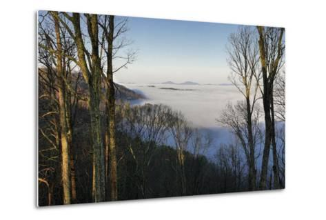 Early Morning Light and Clouds in the Valleys Make Mountains Look Like Islands-Amy, Al White, Petteway-Metal Print