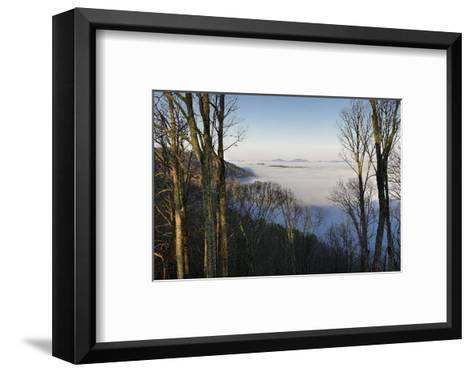 Early Morning Light and Clouds in the Valleys Make Mountains Look Like Islands-Amy, Al White, Petteway-Framed Art Print
